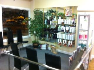 Hair shop lewisham shopping centre